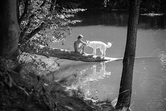 untitled (Zimthiger) Tags: zimthiger menschen people bw sw fuji xt1 hunde dogs nature natur