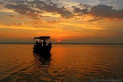 Albufera de Valencia (Luca Morales Guinaldo) Tags: albufera mar sea atardecer sunset barca boat puesta de sol