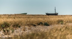 Lydd on Sea  (EXPLORED) (Denise Mansfield) Tags: dungeness