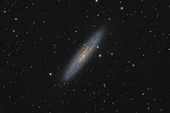 NGC253 (Paul Litchen) Tags: ngc253 galaxy stars astrometrydotnet:id=nova1740754 astrometrydotnet:status=solved