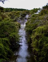 Rotorua. New Zealand (A.N.T 24) Tags: rotorua thermalwonderland newzealand northisland travelphotography photography roadtrip