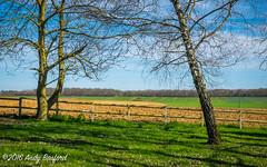 Spring, the Nivre (serial_snapper) Tags: france rpubliquefranaise landscape tree nivredpartement bourgognefranchecomtrgion ciez bourgognefranchecomt fr