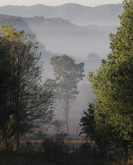 Valley Morn (cormend) Tags: morning travel trees light mist tree trekking trek canon landscape eos dawn asia state hiking burma hike valley layers myanmar inle southeast shan touring birmanie kalaw 50d cormend