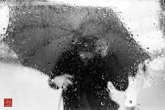 me, myself & eye (新男熊) Tags: portrait people nature rain weather japan 35mm tokyo mirror blackwhite asia asien leute spiegel natur culture location relection 日本 sw nippon 東京 geography aoyama 自然 spiegelung selbstportrait kodaktmax400 regen wetter reflektion 天気 tokio 人 mirroring regenschirm 文化 肖像 白黒 schirm 青山 雨 鏡 アジア 地理 negativefilm 反射 schwarzweis ネガ negativfilm 亜細亜 leicar7 niederschlag 所 場所 kbfilm 陰画