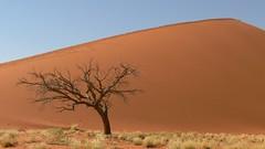 Namibia (tor-falke) Tags: landschaft landscape afrika africa namibia safari sossusvlei desert désert deserto torfalke flickrtorfalke africalandscape ngc düne outdoor