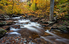 Fall Stream {EXPLORED} (Marvin Foran Photography) Tags: mountains nature water waterfall pennsylvania rickettsglen rickettsglenstatepark pennsylvaniastateparks canon5dmkii marvinforanphotography