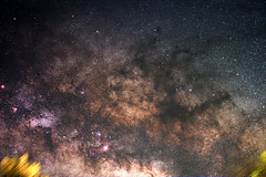 Milky Way 1 (DaemonGPF) Tags: way mosaic dslr milky vixen widefield Astrometrydotnet:status=solved Astrometrydotnet:version=14400 polarie Astrometrydotnet:id=alpha20120594921269