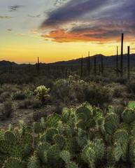 Gate's Pass HDR (BlackRockBacon) Tags: light sunset arizona cactus southwest color photoshop unitedstates desert pentax tucson saguaro tamron hdr k5 pricklypearcactus gatespass photomatix tamron1750