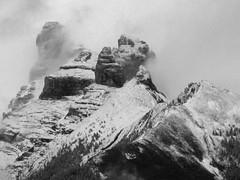 """""""Formations""""  DSC00279 (kluehirschSnowpine) Tags: blackandwhite mist snow canada mountains rock landscape monotone alberta majesty banffnationalpark"""