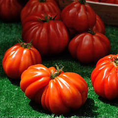 The beefsteak tomatoes (jmvnoos in Paris) Tags: red paris france green fruits vegetables closeup fruit tomato square rouge nikon tomatoes vegetable vert tomates explore 70300mm tomate pomodoro lgumes carr lgume carre beefsteaktomato f4556 5faves explored coeurdeboeuf cuoredibue tomatecoeurdeboeuf seeninexplore d700 beefsteaktomatoes 70300mmf4556 jmvnoos pomodorocuoredibue 5favesext tomatescoeurdeboeuf ochsenherztomate