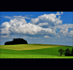 the taste of summer (klaus53) Tags: trees summer clouds nikon loweraustria buckligewelt blinkagain bestofblinkwinners