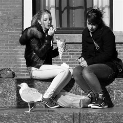 Keeping an eye on him... (Akbar Simonse) Tags: street girls people urban bw holland bird netherlands monochrome square zwartwit candid gull streetphotography denhaag frenchfries thehague meeuw vogel streetshot straat patat straatfotografie straatfoto straatfotograaf dedoka nederlandvandaag akbarsimonse