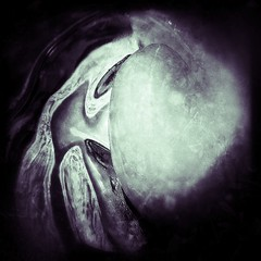 The Melt (Mandolina Moon) Tags: abstract icecubes amorphous iphoneography touchretouch lomora2 snapseed olloclipmacro iphoneartbymandolinamoon