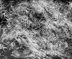 Hawaii-2 (Dennis H Miller) Tags: hawaii nikon dennismiller nikond700 nikond800 dennishmiller nikond800e