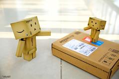 """I come from amazon, dad"" (tuan azizi) Tags: stilllife toys box malaysia amazoncom danbo danboard"