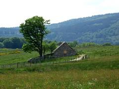 Le buron (brigeham34) Tags: rando cheminsdecompostelle viapodiensis gr65 saugueslesauvage buron chemin campagne champsetptures boisetforts valle margeride chanaleilles hauteloire auvergne france fz45 eu domainelesauvage