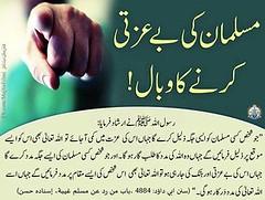 Photo (kufarooq) Tags: islam muslim