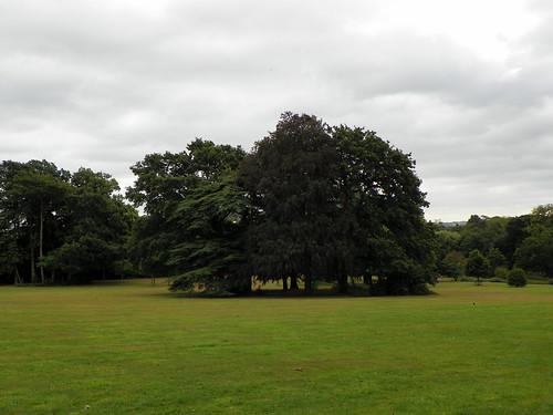 GOC Hoddesdon 009: Barclay Park, Hoddesdon