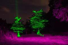 Trees! (~138~) Tags: camping galianoisland vancouverisland victoria abstract art awesome bc canada colours cool dark electric evening fun green laser light lightart lightjunkies lightpaint lightpainting lights longexposure lpwaliance night nightlights nightscape outdoors outside paintingwithlight porple psychedelic shadow shadowpeople singleexposure sky strange trippy woods