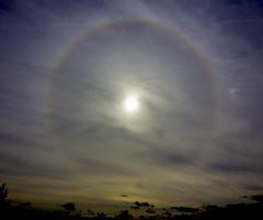 Sun Halo 04-09-2016 at 604 BST IMG_9423 (vinkev) Tags: halo sunhalo 22degreesunhalo 22degree sundog parhelion