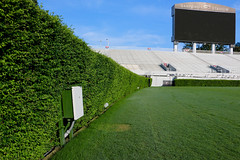 IMG_9710 (UGA College of Ag & Environmental Sciences - OCCS) Tags: grass turfgrass tiff419 419 sanfordstadium privet hedge hedges scoreboard
