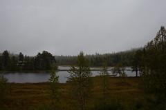 """Nebbia mattutina"" (lenehuse) Tags: fog foggy morning nature norway norwegiannature dark early lygna"