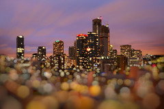 Purple-Peachy Hour of Floating Cityscapes (Katrin Ray) Tags: purplepeachyhouroffloatingcityscapes purplehourmagic bluehour bokeh blur magic downtown skyscrapers lights colours longexposure toronto ontario canada katrinray dreamscapesoftoronto tiltshift miniature canonphotography canon eos rebel t6i 750d