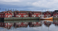 Isn't it good Norwegian Wood? (lunaryuna) Tags: norw3ay lofoten lofotenislands lofotenarchipelago svolvaer town architecture fishermenhuts rorbuer islets traditionalboat reflections bay water coast refractions seeingdouble northernmirrorworlds norwegianwood theimportanceofred lunaryuna