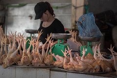 Hands (Feet) up! (frapho) Tags: asia places sapa vietnam market chicken
