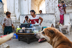 Street food - Mingun, Mynmar (Maciej Dakowicz) Tags: asia myanmar burma mingun myatheinpagoda people dailylife streetphotography animal dog streetfood