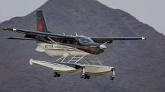 Quest Kodiak (hotdog.aviation) Tags: