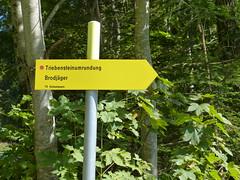 201609131v5 Hinweise (rerednaw_at) Tags: steiermark wanderung triebenstein wegweiser