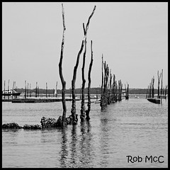 The Oyster farm (Rob McC) Tags: arcachon oysterfarm oyster france sea water refelction posts cultural unusual seascape