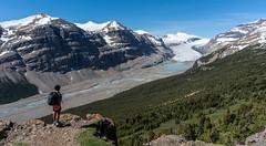 Saskatchewan Glacier from Parker Ridge (NettyA) Tags: 2014 canada canadianrockies saskatchewanglacier icefieldsparkway banffnationalpark hike hiking landscape parkerridge alberta glacier valley mountains