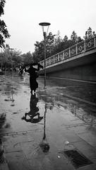 P_20160920_155920_1_EFF_p (Nevi ahsna mnhasr) Tags: mobilephoto mobilephotography street streetphotography streetlife streetphoto autumn rain rainy bw bnw blackandwhite monochrome konya reflection asus asusmobile