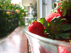 Strawberries and bokeh! (Carl_Barks) Tags: flowers trees red food brown macro green glass fruits closeup fence table daylight strawberry dof bokeh strawberries rail bowl greece