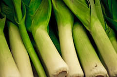 Take a leek? (bennatrinsphoto) Tags: nikon adobe nikkor afs dx lightroom lightroom3 d5100