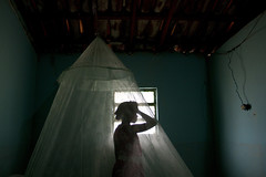 (Lucille Kanzawa) Tags: girl casa menina casabrasileira mosquiteiro