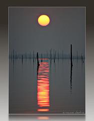 il riflesso! (erman_53fotoclik) Tags: tramonto sole pali acqua controluce rifleso mygearandme mygearandmepremium mygearandmebronze mygearandmesilver mygearandmegold vigilantphotographersunite vpu2 vpu3 vpu4 vpu5 vpu6 vpu7 vpu8 vpu9