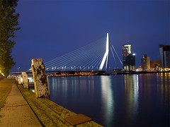 Waterfront from city's centre to the Feyenoord quarter and Kop van Zuid, picture 2. (George Ino) Tags: panorama holland rio skyline river rotterdam waterfront nightscape nightshot nederland thenetherlands maas kopvanzuid erasmusbrug noordereiland wilhelminakade rivier willemskade wereldmuseum koningshaven