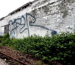 Difer (Grimey  Trains) Tags: street canada art vancouver graffiti bc tag bomb stinger vancity nwk sprayer bhg handstyle difer