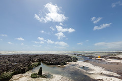 Roedean Undercliff Walk (Carl Wicker) Tags: sea sky seaweed water yellow clouds sussex chalk brighton walk bouy roedean undercliff