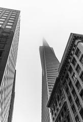 Sky Scraping (JohnMinSF) Tags: sanfrancisco blackandwhite bw building fog architecture pyramid