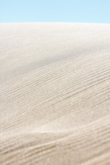 Viento péiname - duna de Bolonia - Tarifa (DGrimaldi) Tags: españa david beach canon andalucía sand dune playa arena duna bolonia franco tarifa grimaldi 70300 550d filtropolarizador dgrimaldi