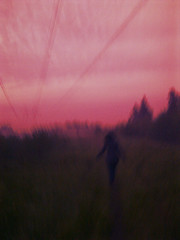 Dusk (prettylittlelife7) Tags: pink blue sunset red summer bw sun flower color colour green nature girl grass sunshine rain finland happy jumping sad north sunny nordic sumer ummer ssummer