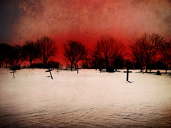Cemetery's Dawn (the lonely pixel) Tags: winter snow canada cemetery grave graveyard montreal brightred lisahowarth montrealartists thelonelypixel
