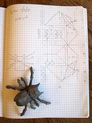 Spider design, hemp handmade paper (M@ttyGroves) Tags: paper insect spider origami handmade papiroflexia hemp arthropod boxpleat