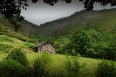 Anoche tuve un sueño.... (Geli-L) Tags: naturaleza verde pueblo asturias niebla cabaña braña monasteriodelcoto ruby10 ruby5 rememberthatmomentlevel4 rememberthatmomentlevel1 rememberthatmomentlevel2 rememberthatmomentlevel3