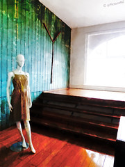 Testing the waters (Steve Taylor (Photography) Internet V slow) Tags: street city newzealand christchurch mannequin window st stairs wooden clothing dress floor y madras steps canterbury boutique nz cbd ng polished 212 panelling testingthewaters dippingatoe