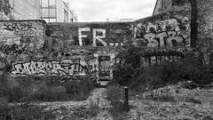 (cristina morello) Tags: grafiti art streetart graffiti streetphotography streephoto noiretblanc blackandwhite biancoenero parigi paris